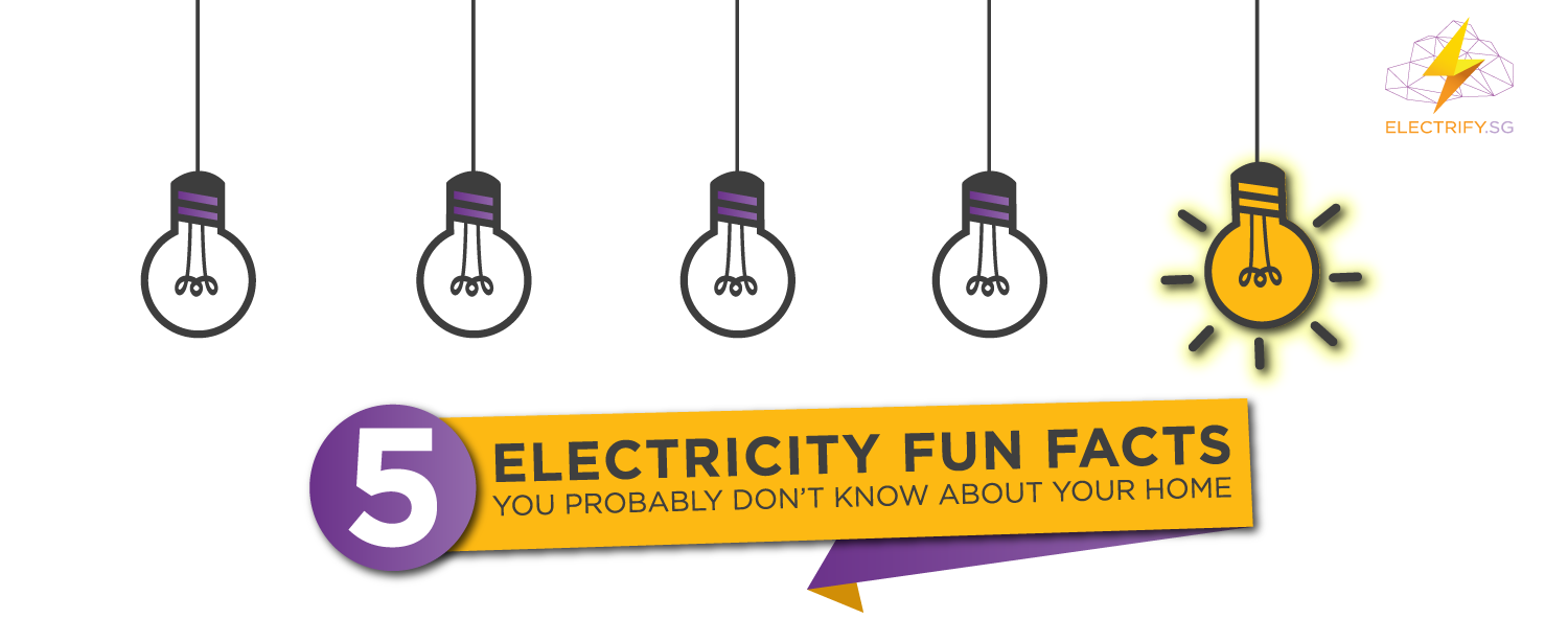 Electricity Fun Facts